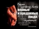 VID_183690908_003040_874.mp4