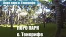 Лоро парк на Канарских островах. Остров Тенерифе и прогулка по зоопарку.