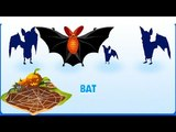 Make Room for Animals Bat ! ICE AGE Adventures - Gameplay Walkthrough Part 19 HD