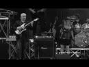 Pino Daniele Irene Grandi - Se mi vuoi (Live)