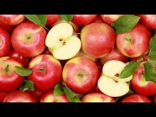 Не вредно ли есть много яблок? | Доктор Мясников