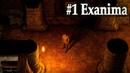 1 Exanima Арена