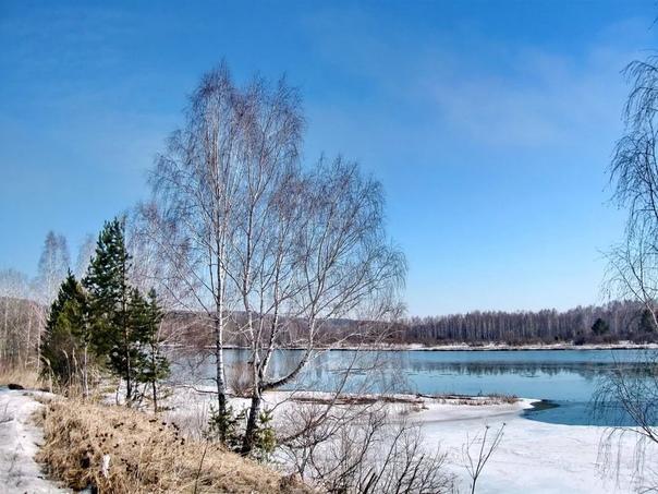 6 марта - Тимофей Весновей.