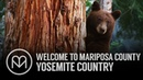 Welcome to Mariposa County Yosemite Country