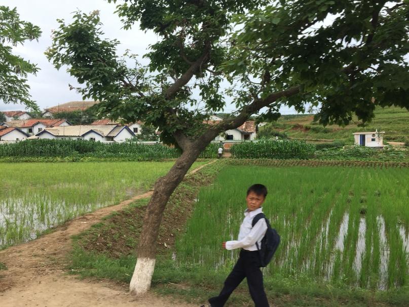 Отчет о путешествии в Северную Корею 2018. Корейский школьник