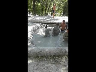 Кошелев отдыхает в Джубге