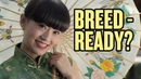"""Are Chinese Girls """"Breed Ready?""""   China Uncensored"""