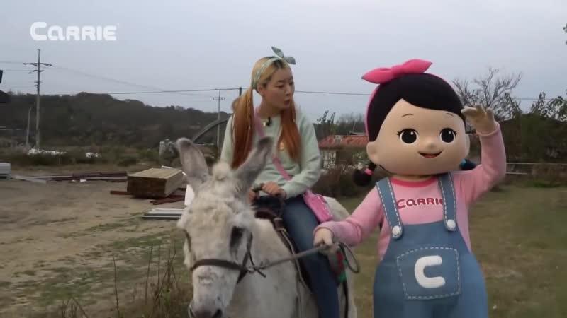 엘리가 간다 슈렉의 친구 당나귀 동키를 만나러 엘리와 꼬마캐리가 동물농장에 다녀왔어요 먹이주기 체험l 엘리앤 투어