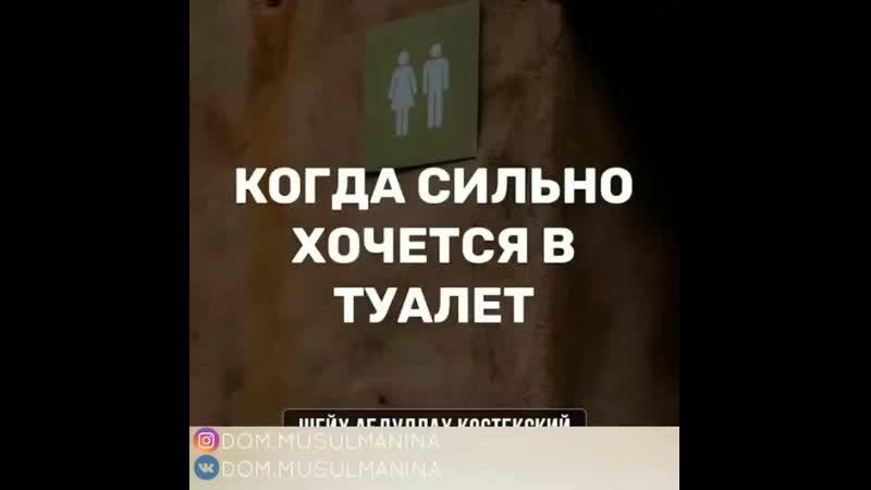 Когда хочешь в туалет