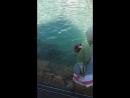 Вода Святоï Анни