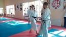 Neko ashi dachi Shito ryu / exercise from World Champion WKF Hoang Nguyen Ngan (Vietnam)