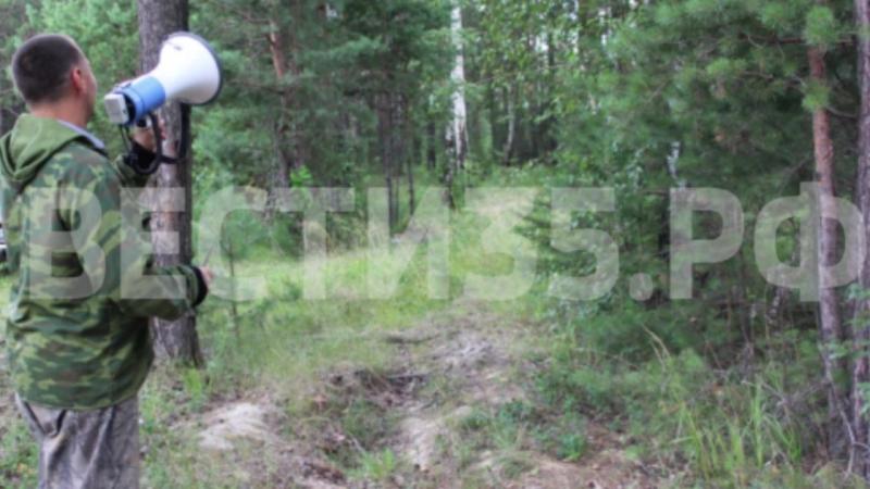 Две школьницы заблудились в лесу под Устюжной