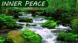 Relaxation Music for Peaceful Mind Sleep Sounds