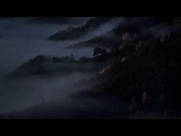 November XI - Autumn Night