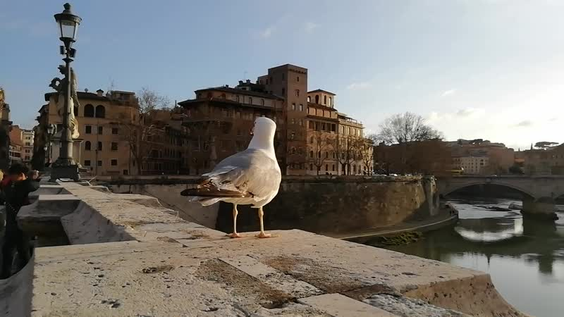 Ponte Sant'Angelo, Comune di Roma RM, Италия