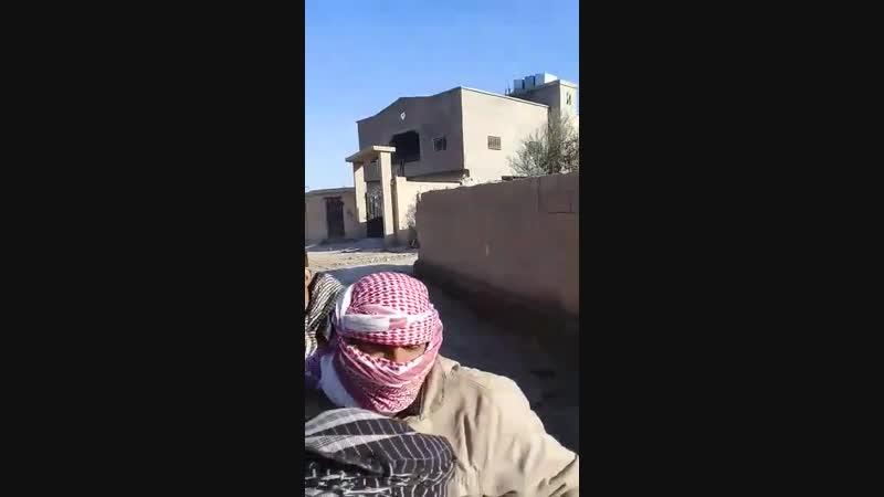 16.01.19 - мечеть Зейд Ибн Сабит в Аш-Шаафа