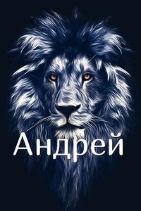 Андрей Барбулат