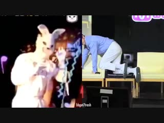 Hollywood Rabbit Vs Mr. Park