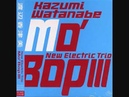 Kazumi Watanabe New Electric Trio Lawns