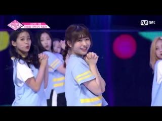 PRODUCE 48 | AKB48 - Наканиши Чиери - Nekkoya (pick me) fancam
