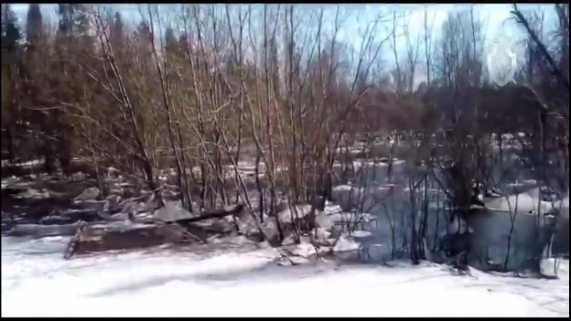 Следственный Комитет опубликовал видео затонувшего в Коми вездехода