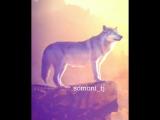 somoni_tj+InstaUtility_39adf.mp4
