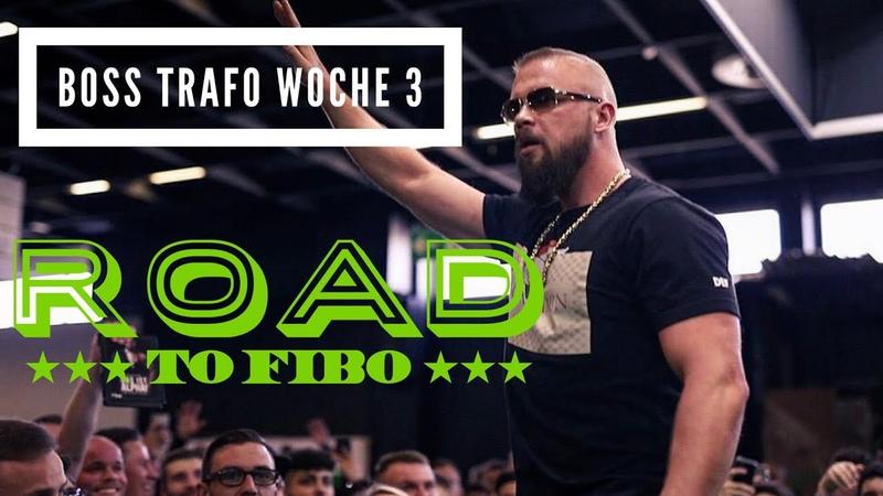 BOSS TRAFO WOCHE 3 Road to FIBO