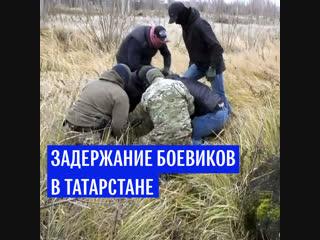Задержание боевиков в Татарстане