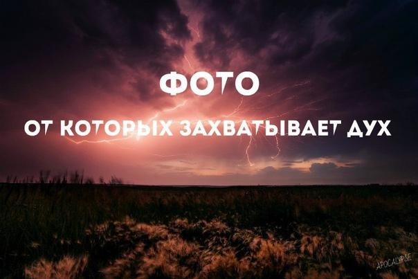 Фото -99353432
