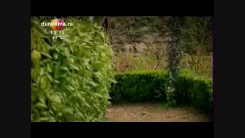 Ibrahim _ hatice - ابراهيم و خديجة(360P).mp4
