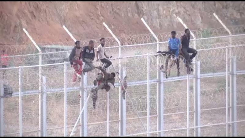 Cientos de inmigrantes cruzan la valla de Melilla