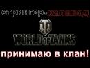 СТРИНГЕР КАЛАВОД ПРИНИМАЮ В КЛАН ШЕРШНЕЙ
