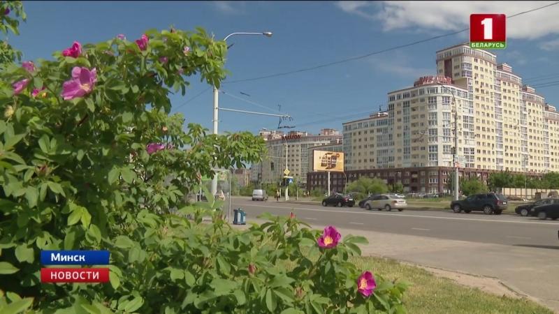 Неустойчивая погода ждет белорусов на этой неделе