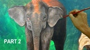 Commissioned Acrylic Painting Mother and Baby Elephant in Forest Landscape Part 2
