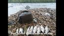 Погоды для рыбалки, плохой не бывает И опять за хариусом