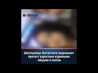 Школьницы Волжского выражают протест взрослым куриными яйцами и матом
