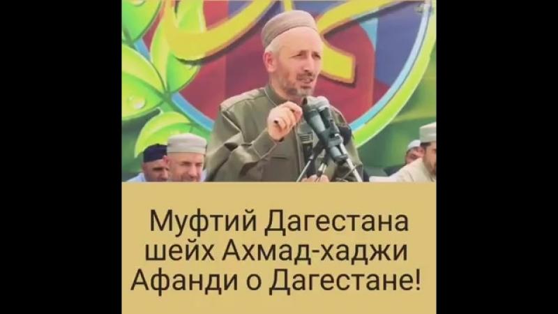Ахмад Хаджи про Дагестан 🎥⤴👍