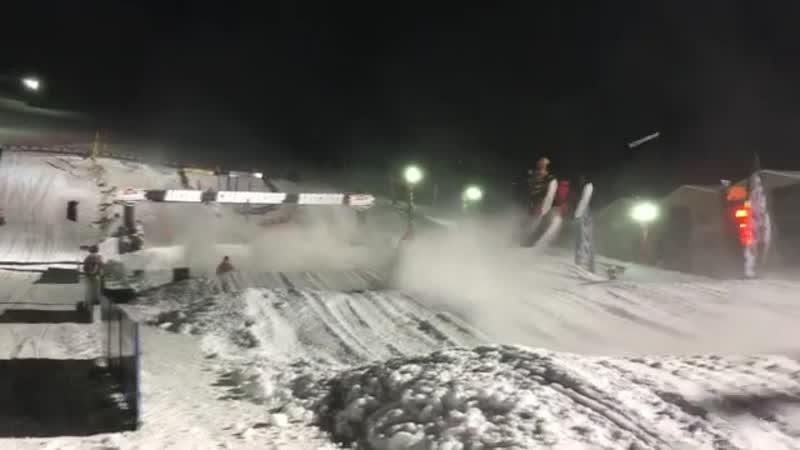Перелетные снежики