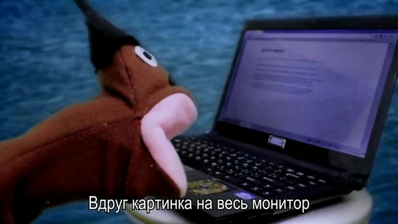 АНТИПИРАТСКИЙ ЗАГОН (МЫ НЕ ПИРАТЫ!)(0).mp4
