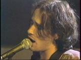 JEFF BUCKLEY - Grace - NPA LIVE 1995