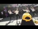 Флешмоб КИТиГ 9 М Б