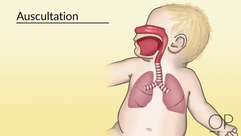 Respiratory Assessment by Brienne Leary for OPENPediatrics