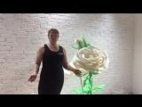 Снежанна Богданова ,участница проекта fitness леди