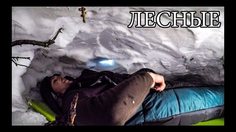 24 ЧАСА В ГОРАХ ЗИМОЙ | НОЧЬ В БЕРЛОГЕ НА СКАЛЕ - Снежное Укрытие - Пятка медведя|Горы Снег Бушкрафт