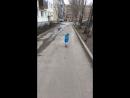 Александр Рогозин — Live