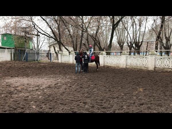 Конь псих) крутой скок !