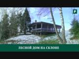 Лесной домик на склоне, вписанный в природу __ FORUMHOUSE