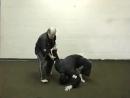Nick Cerios Kenpo - Volume 3 - Advanced Self-Defense
