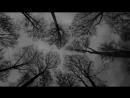 Exitio /Funeral Doom Metal/Sweden - teaser