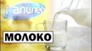 Галилео | Молоко 🥛 [Milk]